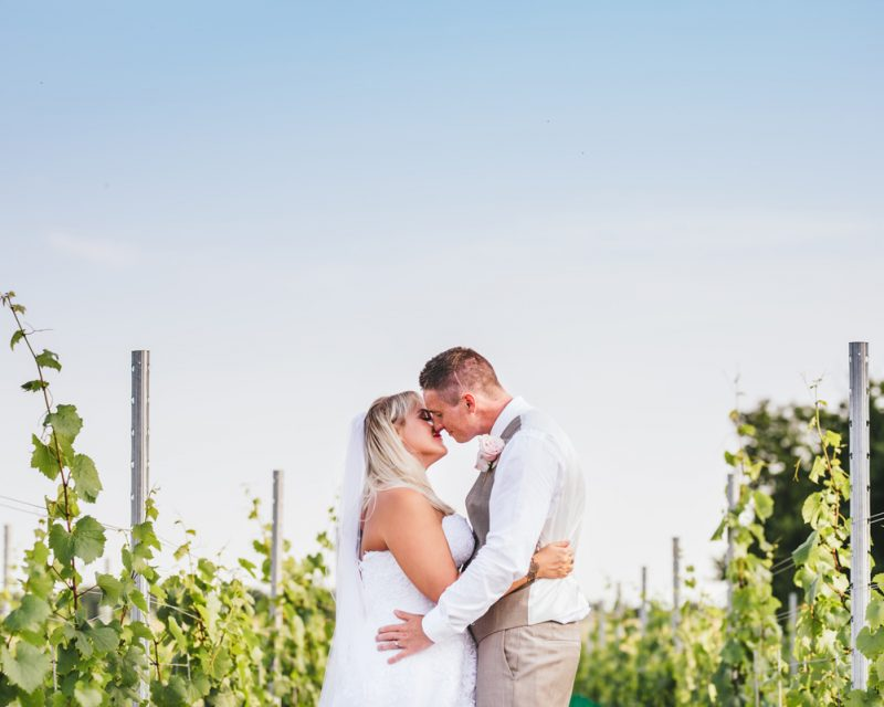 Bride and Groom standing in vineyard with blue sky